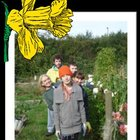 halow allotment.jpg