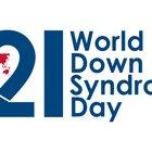 wdsd-logo-large (2).jpg