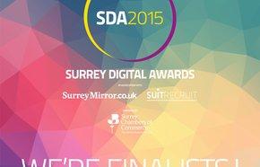 SDA2015_Finalist_1.jpg