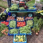 Produce from Birtley House (002).JPG