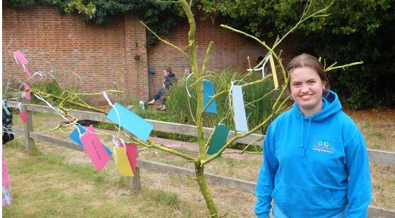 Evie tree.JPG