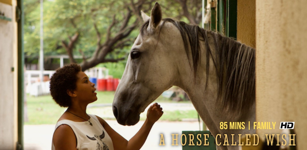 A HORSE CALLED WISH WEBSITE BANNER.jpg