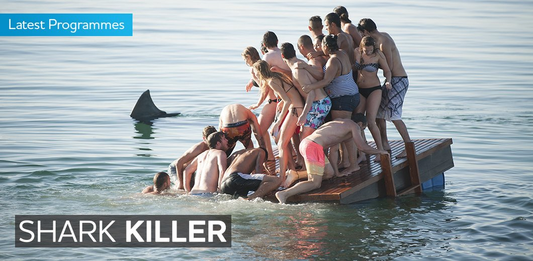 SharkKillerHomepageBanner.jpg